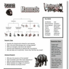 Animal Kingdom Research - Vertebrates and Invertebrates