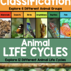 Animal Life Cycle Unit
