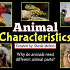 Animal Parts PowerPoint ~ Head, Shoulders, Knees and Toes