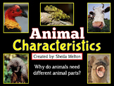 Animal Characteristics PowerPoint {Over 100 real pictures