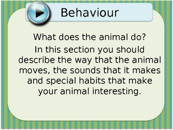 Animal Report Presentation