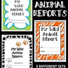 WILD ANIMAL Reports--Writing to Inform--Report Frames (3 S