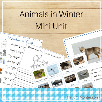Mini Unit: Animals in Winter