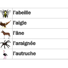 Animaux (Animals in French) word wall