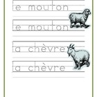 Animaux de ferme (Farm animals in French) Writing, Reading