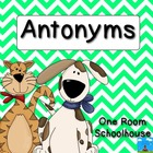 Antonym Dogs