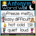 Antonym Word Wall - Illustrated