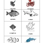 Aquarium Trip, a checklist form
