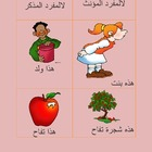 Arabic Demonstrative Pronoun