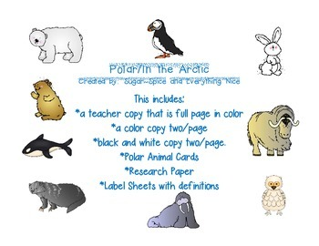Arctic/Polar Animals Emergent Story with Research Project