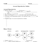 Asexual Reproduction Notes Outline Lesson Plan