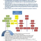 Assessment Flowchart for RTI