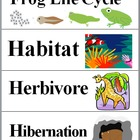 Awesome Animals - Science Word Wall Cards