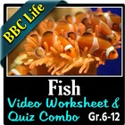 BBC Life - Fish Episode - Video Questions Worksheet & Vide