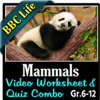 BBC Life - Mammals Episode - Video Questions Worksheet & V