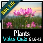 BBC Life - Plants Episode - Video Quiz