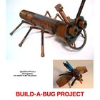 BUILD A BUG PROJECT