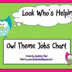 Back To School Owl Themed Class Job Chart