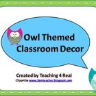Back To School Owl Themed Classroom Decor