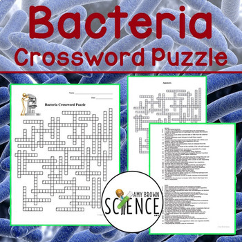 Bacteria and Prokaryotes Crossword Puzzle