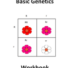 Basic Genetics - Intro Genetics Complete Workbook with Quiz
