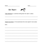 Bat Report Template