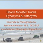 Beach Themed Monster Trucks- Synonyms & Antonyms
