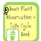 Bean Plant Observation Booklet including life cycle sort