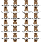 Bear Themed Top of the Chart Stickers or Pencil Labels