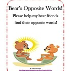 Bear's Opposite Words!  File Folder Game