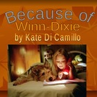 Because of Winn Dixie Guided Review Novel Study