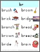 Beginning Blends Posters - 20 pages