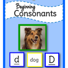 Beginning Consonants: Literacy Sorting Center