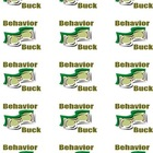 Behavior Bucks Student Rewards/Incentive Program