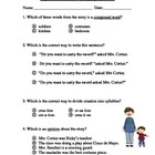 Big Bushy Mustache Language Arts Test/Quiz ~ Houghton Mifflin
