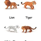 Big Cats Cards
