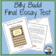 Billy Budd Final Test - Essay Examination