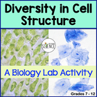 Biology Lab:  Diversity of Cell Structure