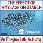 Biology Lab: The Effect of the Enzyme Amylase on Starch
