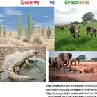 Biomes: Desert & Grassland - Lesson Presentation, Videos,