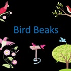 Bird Beaks (PowerPoint) For Elementary