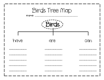 Bird Tree Map