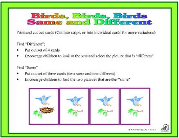 Birds Birds Birds Same and Different