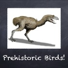 Birds Vol. 02: Prehistoric Birds - PowerPoint Slideshow Pr