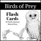 Birds of Prey Flashcards