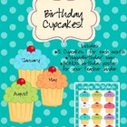 Birthday Cupcakes - Turquoise Dot Theme