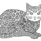 Black & White Detailed Cat Coloring Sheet