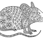 Black & White Detailed Mouse Coloring Sheet