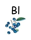 Blends and Digraphs Signs