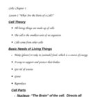 Body Cells Notes